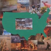 U.S.A. Wildfires, detail, State of the World: Rootless
